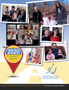 acnj-annual-report-2020-cover